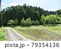 日本 群馬の水上 夏の風景 79354136