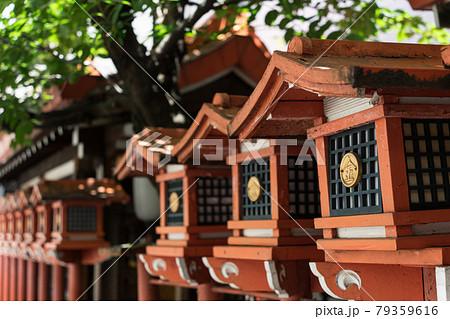 名古屋市西区 円頓寺商店街 金刀比羅神社 79359616