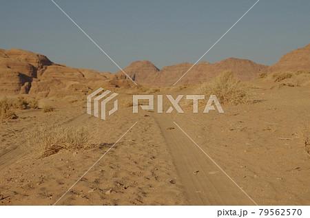 【ヨルダン】広大な砂漠ワディラム、砂漠にできた車の轍 79562570