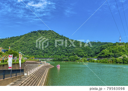 初夏の相模湖 スワンボート 神奈川県 79563098