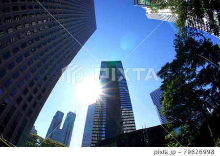 東京副都心新宿の超高層ビル群と都庁 79626998