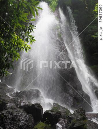 幻の滝「うそぐいの滝」 2021年6月 熊本県阿蘇郡高森町津留 79657060