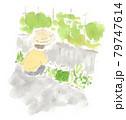 ガーデニング:草むしり(草取り)の水彩イラスト 79747614