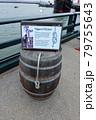 水夫のひもの結び方の展示 79755643