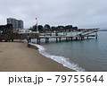 浜辺の桟橋 79755644
