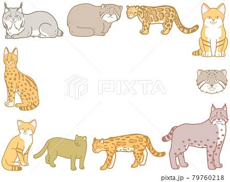 マイナーな猫科動物 フレーム スナネコ イラスト 79760218
