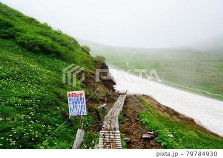 秋田駒ケ岳 阿弥陀池避難小屋から旧道コースへの入口 79784930