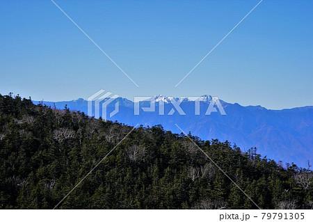 国師ヶ岳北稜からの白根三山・仙丈ヶ岳・甲斐駒ヶ岳 79791305
