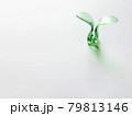 緑色のプラスチックの双葉と灰色背景のコピースペース 79813146