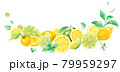 爽やかなシトラスとミントの水彩イラスト。ボトム湾曲した装飾フレームデザイン。レモンとライム。 79959297