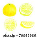 グレープフルーツの水彩イラストまとめ 79962986