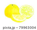 グレープフルーツの水彩イラスト 79963004