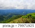 広大な山と森林 秋田県 7月 79971925