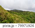 広大な山と森林 秋田県 7月 79971926