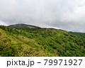 広大な山と森林 秋田県 7月 79971927