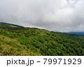 広大な山と森林 秋田県 7月 79971929