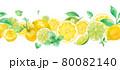 爽やかなシトラスとミントの水彩イラスト。シームレスパターン。装飾ライン。レモンとライム。 80082140