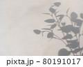 シルエット 葉 木の葉 80191017