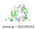 色々なハーブを背景にしたハーブティーの水彩イラスト。(カモミール、ミントローズヒップ、オレガノ、タイ 80248344
