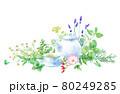 色々なハーブを背景にしたハーブティーの水彩イラスト。(カモミール、ミントローズヒップ、オレガノなど) 80249285