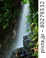 緑が鮮やかな滝 80276532