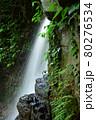緑が鮮やかな滝 80276534