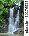 緑が鮮やかな滝 80276535