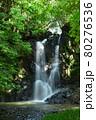 緑が鮮やかな滝 80276536