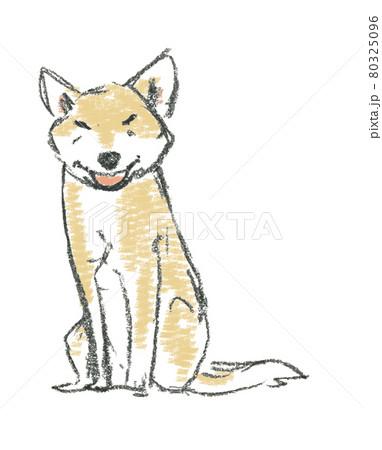 笑顔の犬 座る 80325096