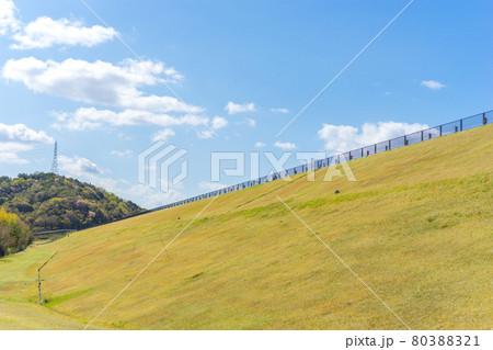 平荘湖周辺の散策(兵庫県加古川市平荘町)※作品コメント欄に撮影位置 80388321