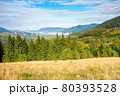 beautiful morning landscape in mountain. forest on the hills. stunning autumn scenery of carpathians with gorgeous cloudscape and fog in the distant valley 80393528