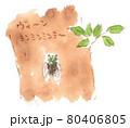夏の風景:樹木に留まって鳴くミンミンゼミの水彩イラスト 80406805