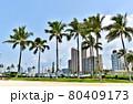ハワイの休日 80409173