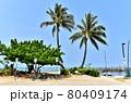 ハワイの休日 80409174