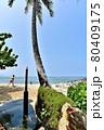 ハワイの休日 80409175