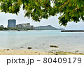 ハワイの休日 80409179