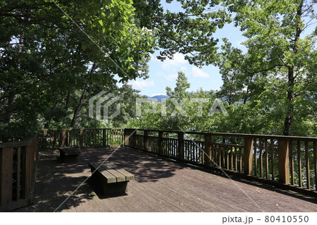 緑の樹々に囲まれたベンチのある休憩所の風景 80410550