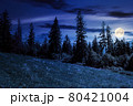 spruce forest on the grassy hillside at night. beautiful nature scenery in mountains. summer landscape with dark sky above the distant ridge in full moon light. explore backcountry concept 80421004