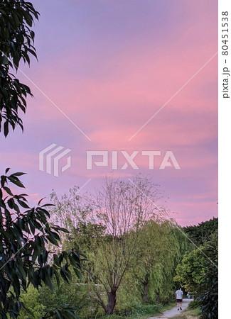 公園の散歩道の空を美しく幻想的なグラデーションカラーのピンク色にに染める夕日 80451538