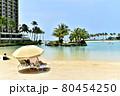 ハワイの休日 80454250