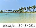 ハワイの休日 80454251