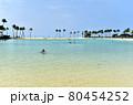 ハワイの休日 80454252