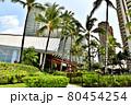 ハワイの休日 80454254