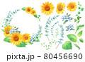 ひまわりとオキシペタラム(ブルースター)、ユーカリの円形フレーム装飾。水彩イラスト。エレメント 80456690