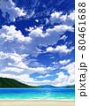 【縦長用】青空と雲08_山01_海06 80461688