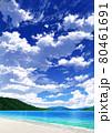 【縦長用】青空と雲08_山01_海09 80461691