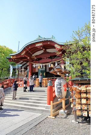 亀戸天神  本殿と参拝する人々 東京都江東区   80487375
