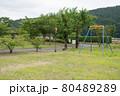 公園の遊具 80489289