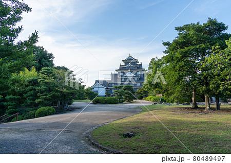 【岡山県】 岡山城 80489497