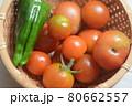 収穫したミニトマトとピーマン 80662557
